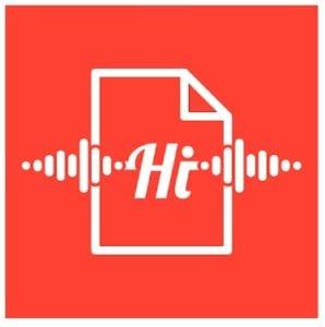 Voice notes logo