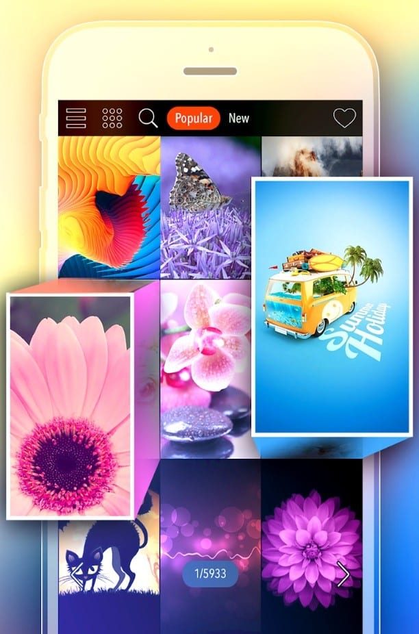 Kappboom app