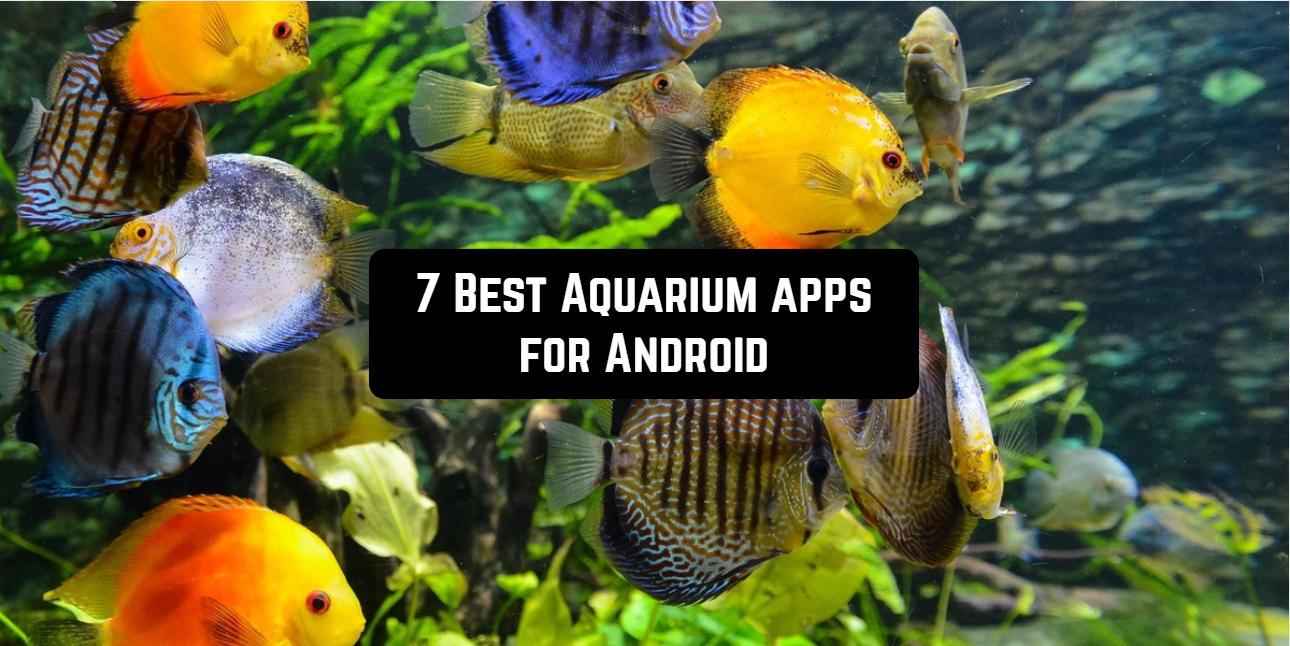 7 Best Aquarium apps for Android