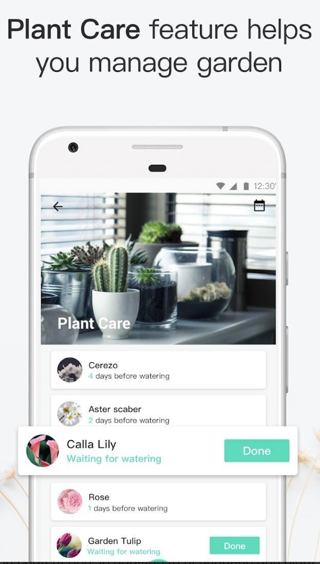 PictureThis app