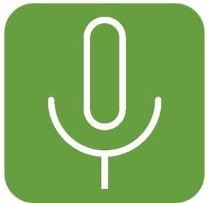Background voice recorder logo