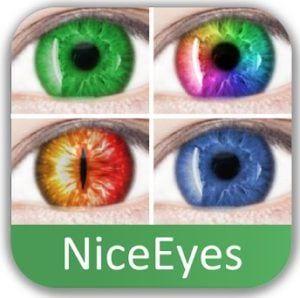 NiceEyes logo