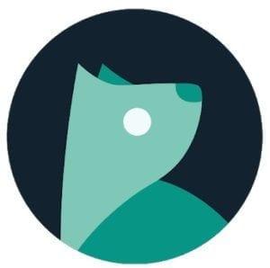 Evie Launcher logo